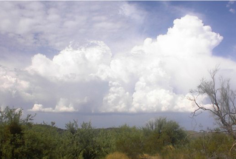 Thunder Heads develop over the open Desert